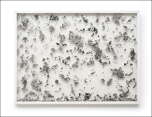 Star_flakes_2018_platinum-leaves_and_frame_76x1015cm-530(80)