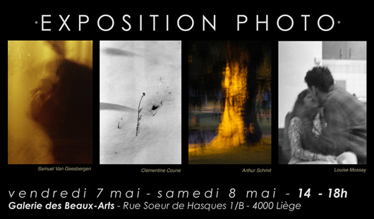 Expo-Photo-Affiche-530x311-80